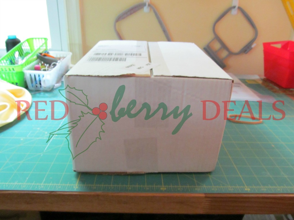 redberrydeals_elf_mysterybox2014
